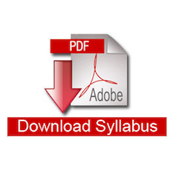 Link to the syllabus download